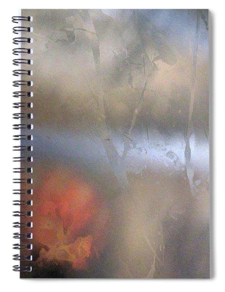 Xiv - Fair Realm Spiral Notebook