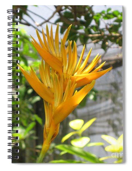 Yellow Bird Of Paradise Spiral Notebook