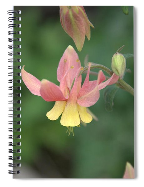 Yellow Columbine Spiral Notebook
