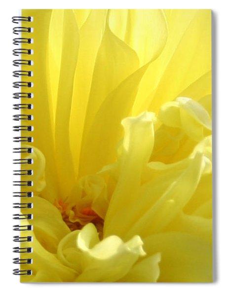 Yellow Dahlia Burst Spiral Notebook