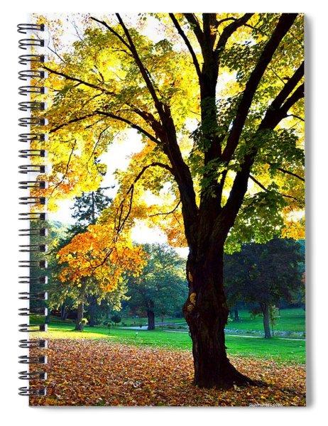 Yellow Highlights Spiral Notebook