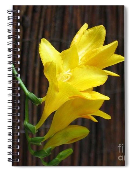 Yellow Petals Spiral Notebook
