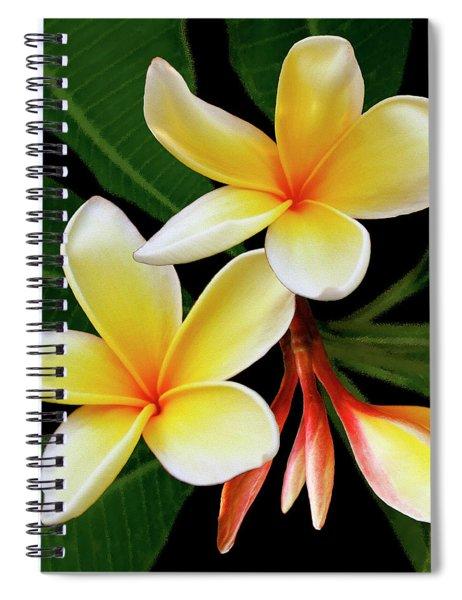 Yellow Plumeria Spiral Notebook