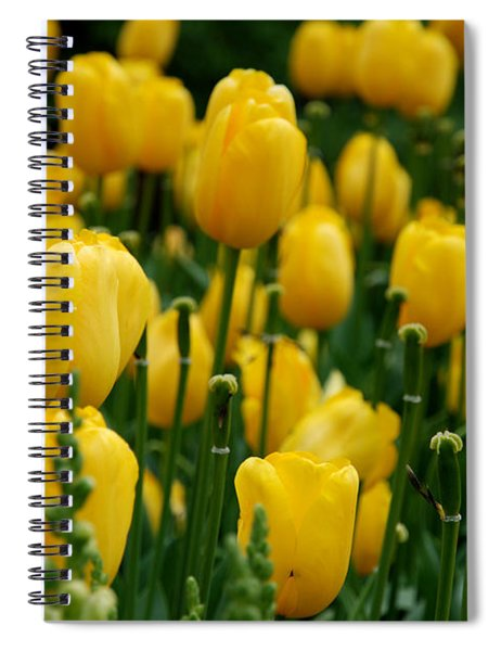 Yellow Tulip Sea Spiral Notebook