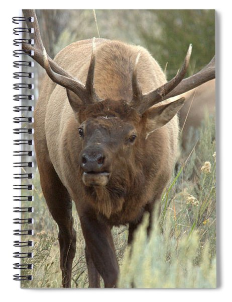 You Looking At Me Spiral Notebook