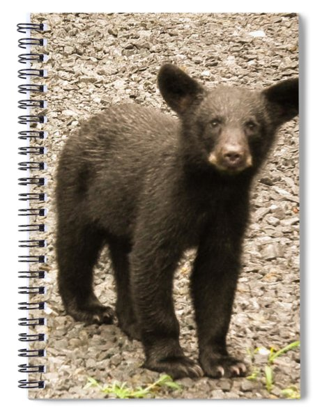 Spiral Notebook featuring the photograph Young Cub by Jan Dappen