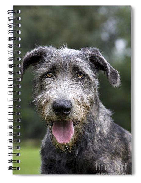 Young Irish Wolfhound Spiral Notebook