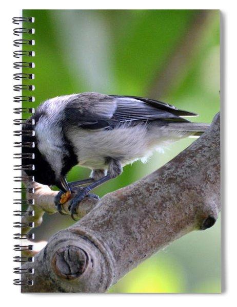 Yumyum Spiral Notebook