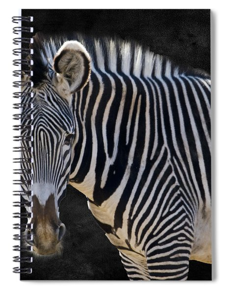 Z Is For Zebra Spiral Notebook