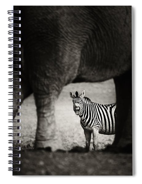 Zebra Barking Spiral Notebook