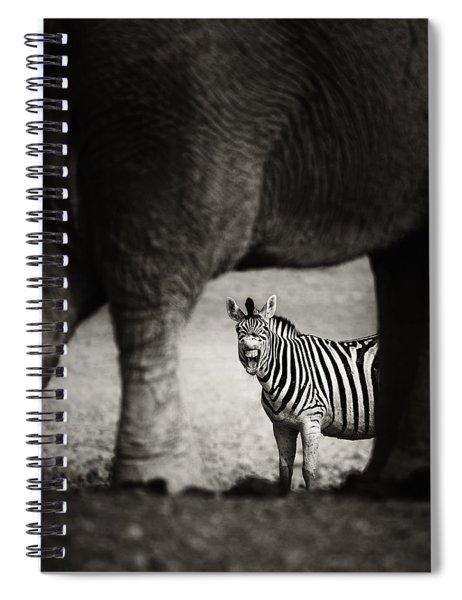 Zebra Barking Spiral Notebook
