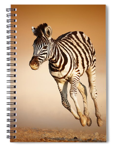 Zebra Calf Running Spiral Notebook