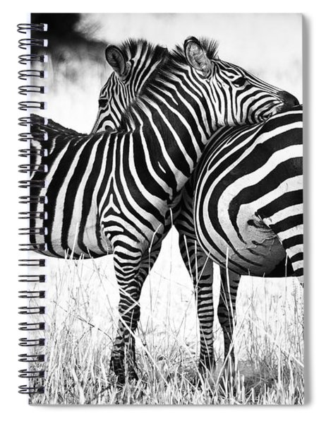 Zebra Love Spiral Notebook