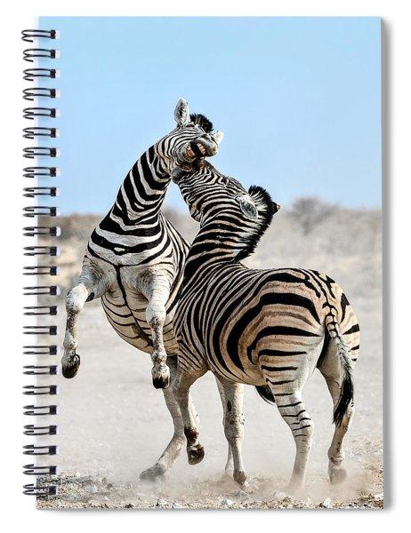 Zebra Stallions Fighting In Etosha Np Spiral Notebook