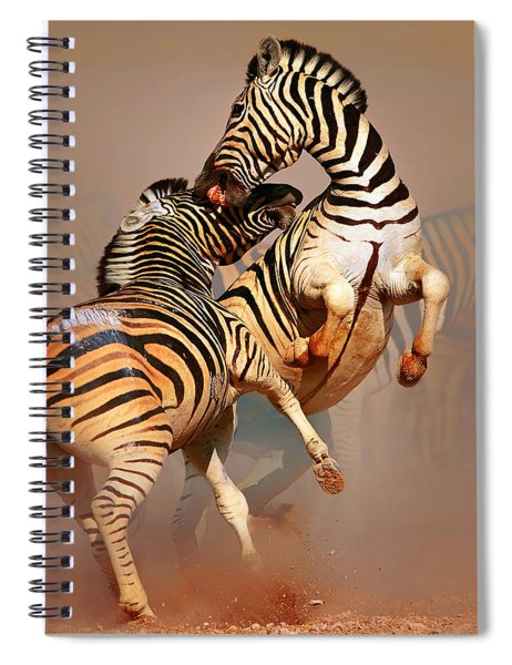 Zebras Fighting Spiral Notebook