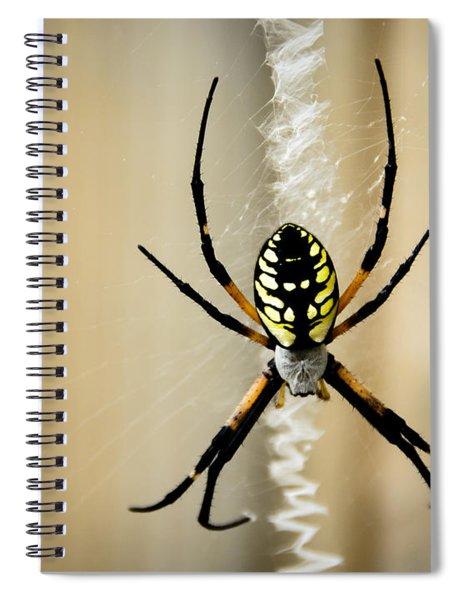 Zig Zag Is More Fun Spiral Notebook