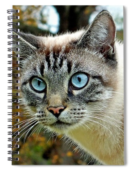 Zing The Cat Upclose Spiral Notebook
