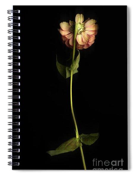 Zinnia Spiral Notebook