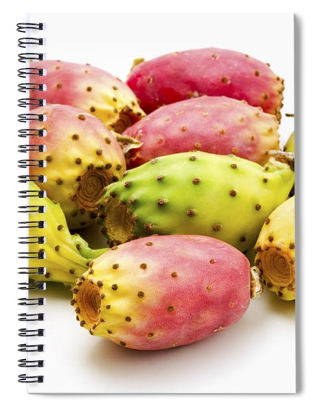 Fruits Of Opuntia Ficus-indica  Spiral Notebook