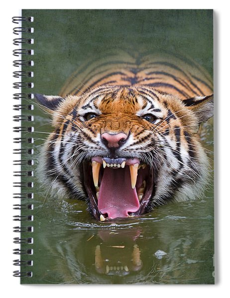 Angry Tiger Spiral Notebook