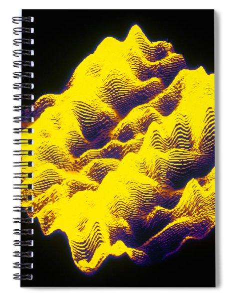 Dna Stm Spiral Notebook