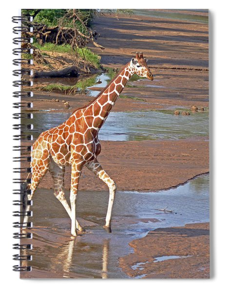 Reticulated Giraffe Spiral Notebook
