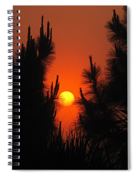 Rise And Pine Spiral Notebook