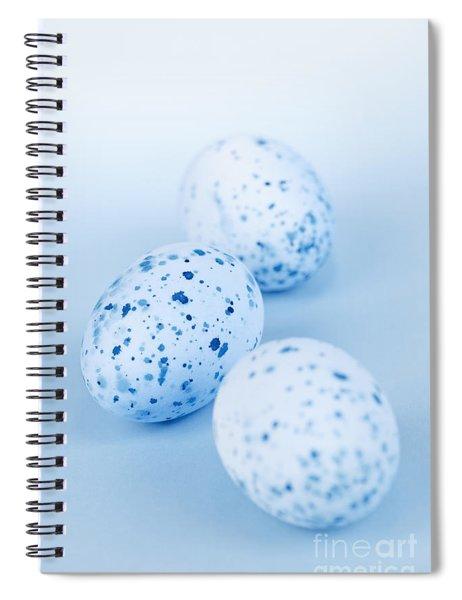 Blue Easter Eggs Spiral Notebook