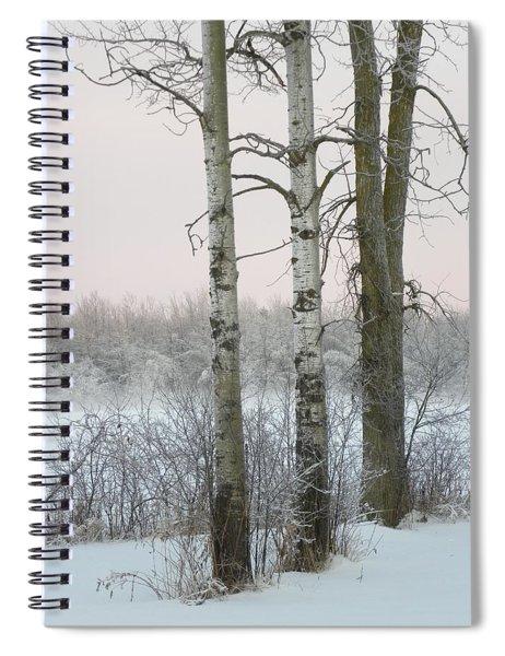 3 Standing Tall Spiral Notebook