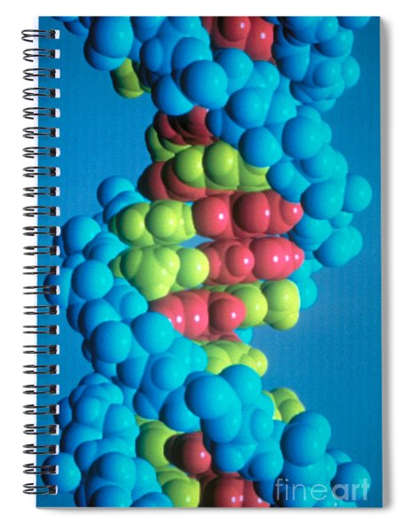 Dna Spiral Notebook