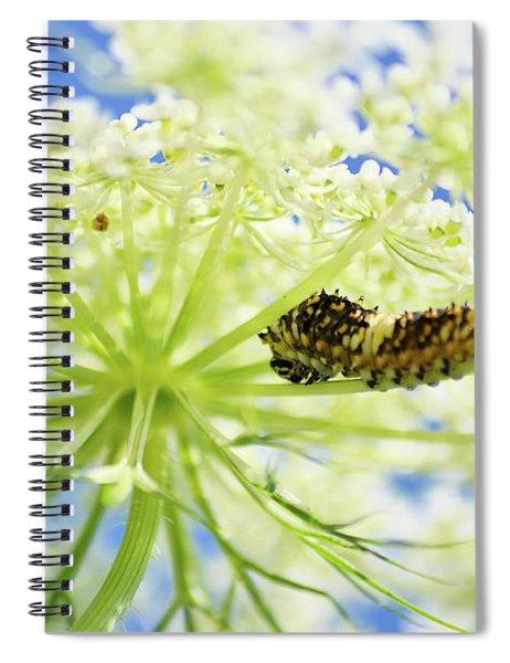 A Caterpillars Palace Spiral Notebook