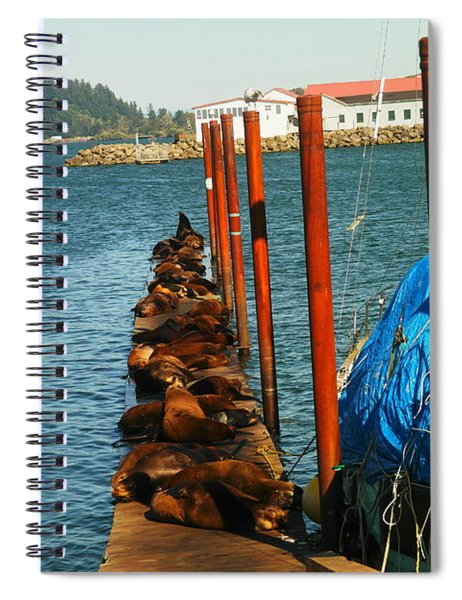 A Dock Of Sea Lions Spiral Notebook