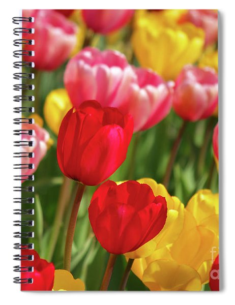 A Lot Of Tulips  Spiral Notebook
