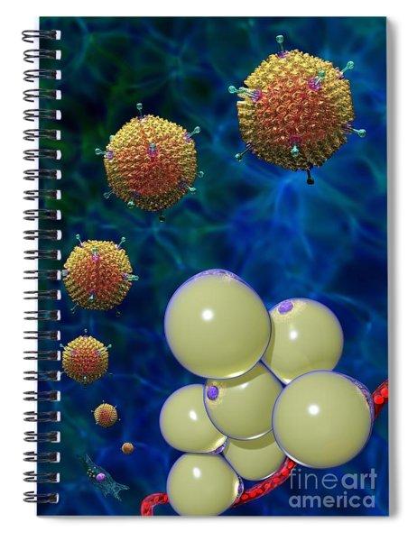 Adenovirus 36 And Fat Cells Spiral Notebook
