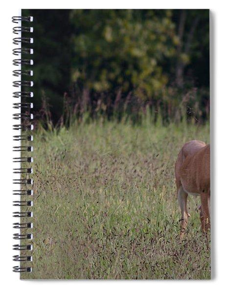 Alert Doe And Fawn Spiral Notebook
