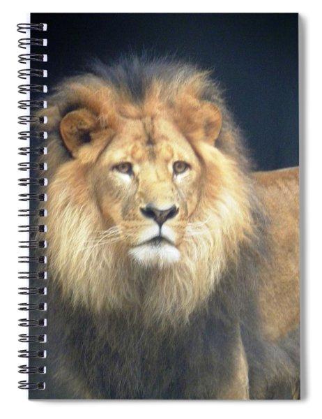 Almighty Spiral Notebook