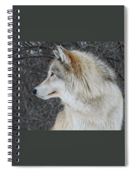 Alpha Spiral Notebook