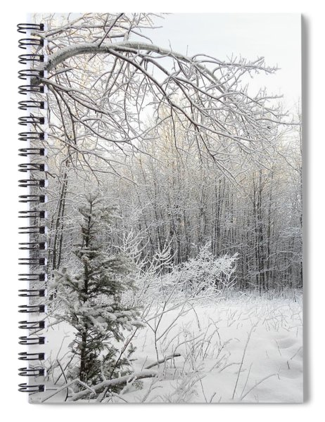 And More Snow Spiral Notebook