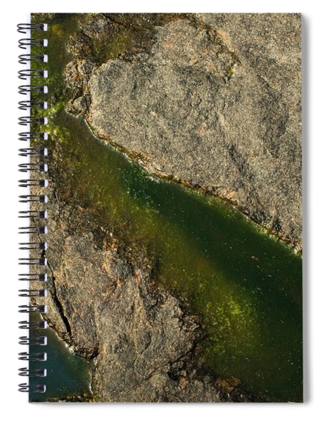 Another World Iv Spiral Notebook