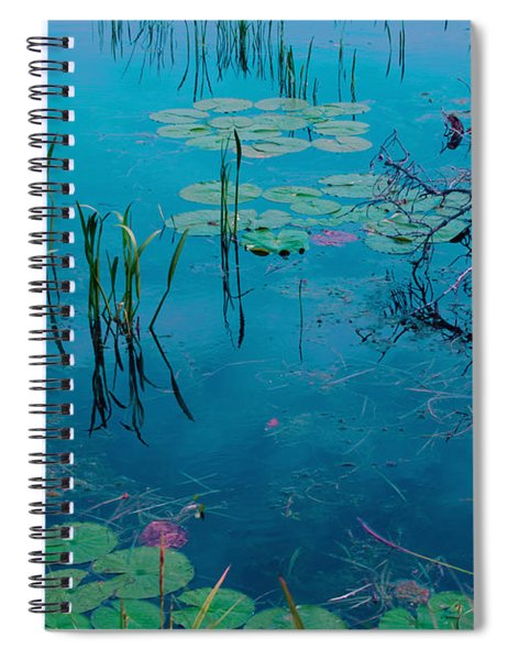Another World Vii Spiral Notebook