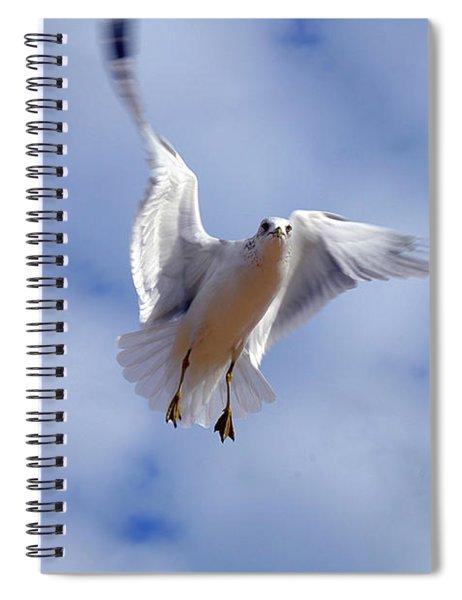 Applying Brakes In Flight Spiral Notebook