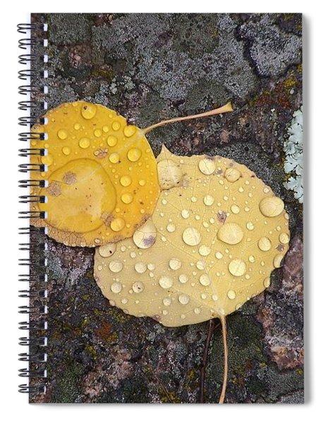 Aspen Tears Spiral Notebook