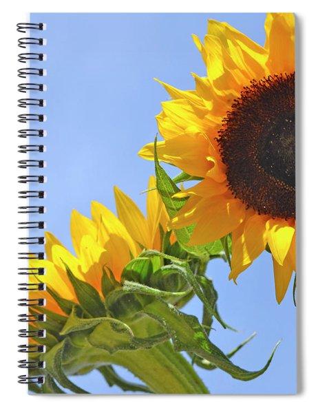 August Sunshine Spiral Notebook