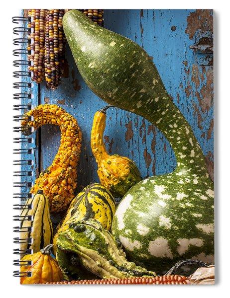 Autumn Gourds Spiral Notebook