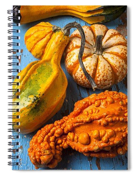 Autumn Gourds Still Life Spiral Notebook