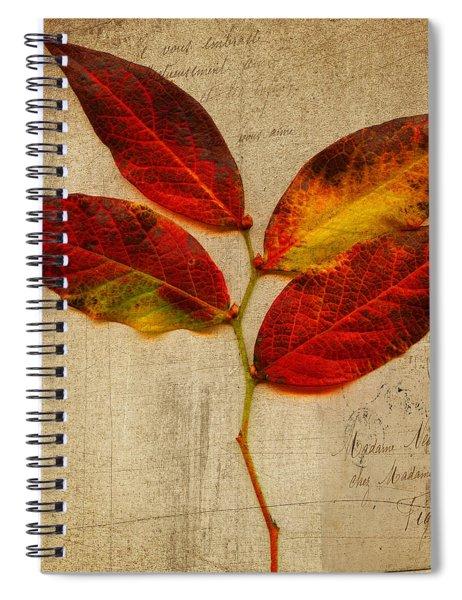 Autumn Leaf With Texture Spiral Notebook