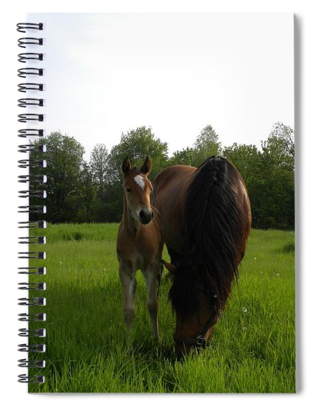 Babe With Mom Spiral Notebook