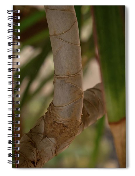 Bark With Leaves Spiral Notebook