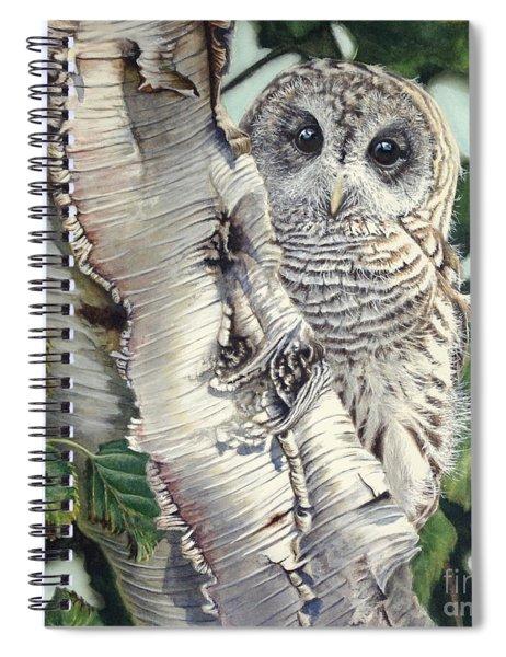 Barred Owl II Spiral Notebook