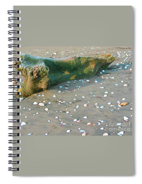 Beachcombing Spiral Notebook